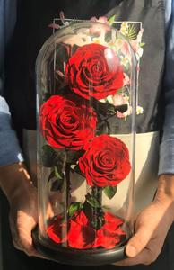 3 rose in glass dome