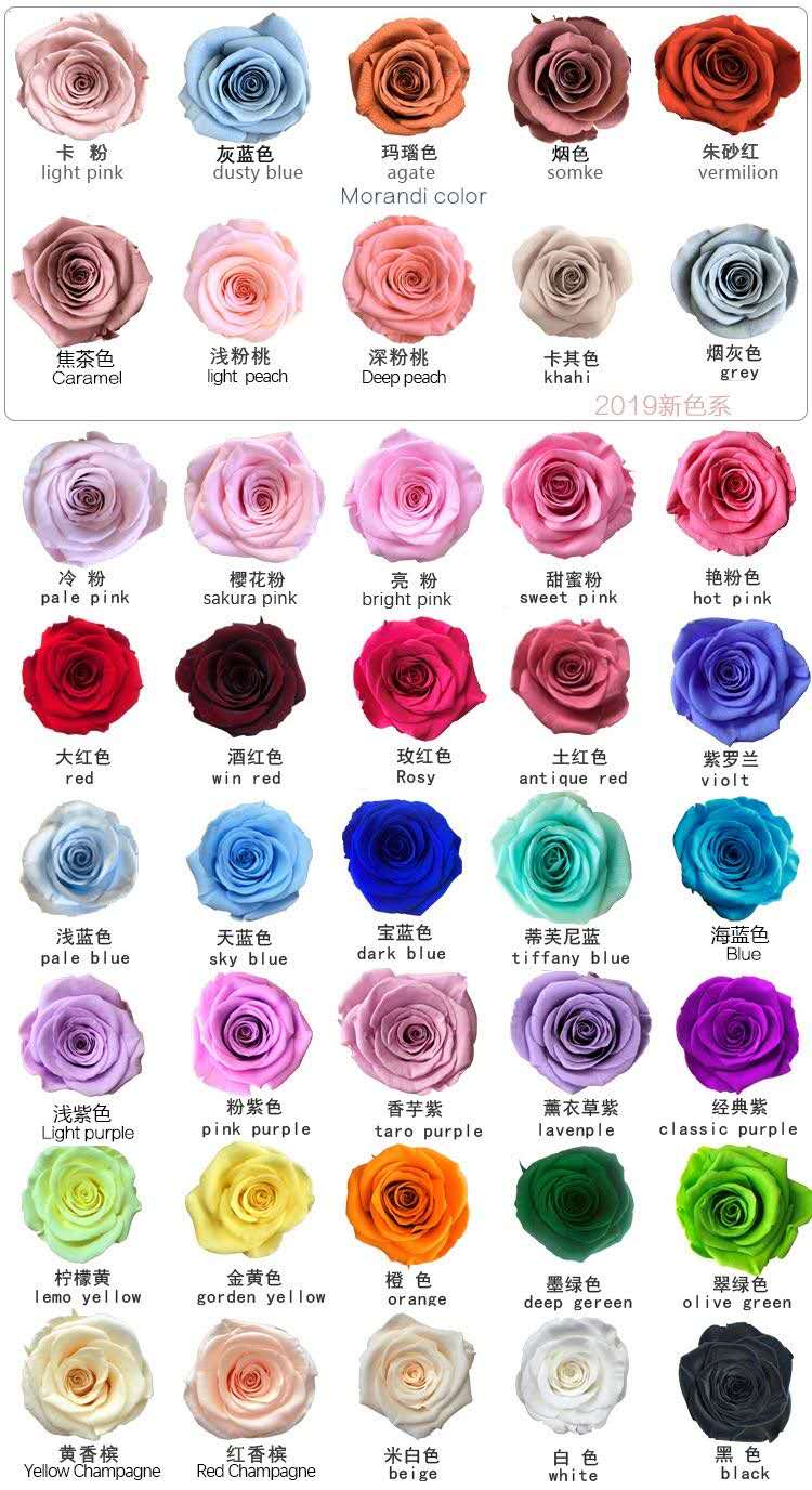 Rose Color Code