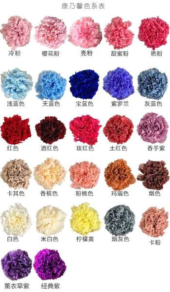Carnation Color Code