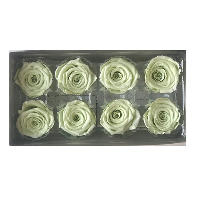 4-5 cm rose petal-light green