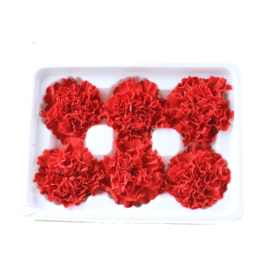 5-6 cm carnation head-red