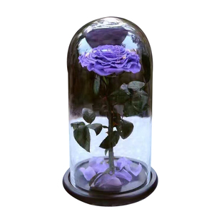 Glass in Dome - Purple