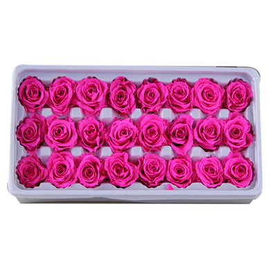 2-3 cm rose petal-bright pink