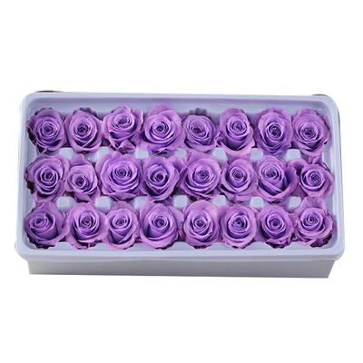 2-3 cm rose petal-purple