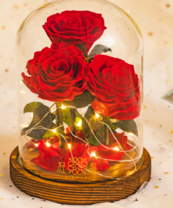 rose glass dome with light